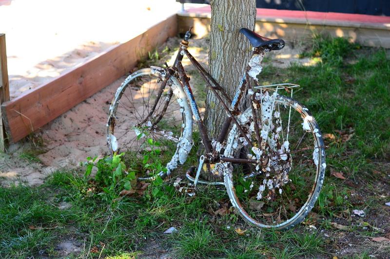 Isegi vette visatud jalgratta küljes hakkasid austrid kasvama :)