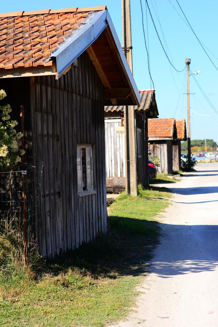 Austrikasvatajate tänav